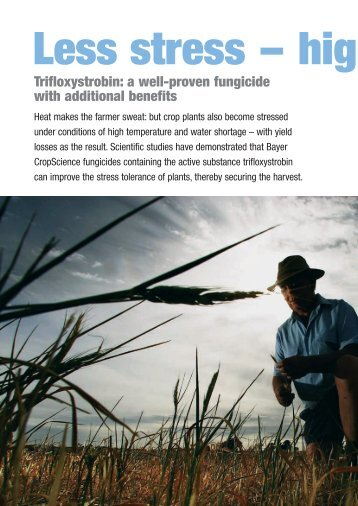 Download: ( 524 KB pdf) - Bayer CropScience Mexico