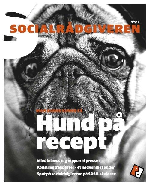 SOCIALRÅDGIVEREN - Dansk Socialrådgiverforening
