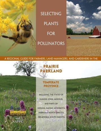 Prairie Parkland - Pollinator Partnership