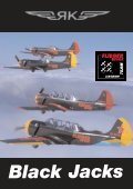 Black Jacks - The story of the FLiEGERREVUE-Airshow-Team - Page 4