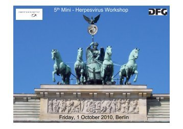 5th Mini - Herpesvirus Workshop Friday, 1 October 2010, Berlin - GfV
