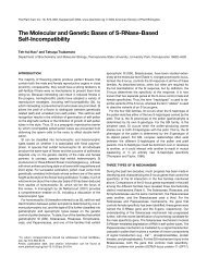 The Molecular and Genetic Bases of S-RNase-Based Self ...
