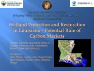 Wetland Protection and Restoration in Louisiana – Potential Role of ...