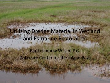 Using Dredge Material in Wetland Restoration - The Coastal Bays ...