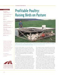 Profitable Poultry: Raising Birds on Pasture - Polk County