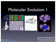 Genomics7620 Spring 2011 Mol Evol Lecture 1 APJdK