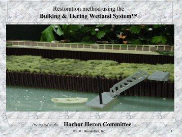Bulking & Tiering Wetland System