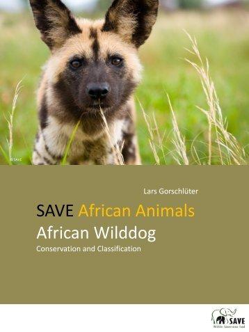 African Wilddog - SAVE Wildlife Conservation Fund