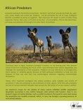 African Wilddog - SAVE Wildlife Conservation Fund - Page 2