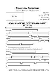 Segnalazione Certificata Inizio Attività (S.C.I.A.) - Comune di Brenzone