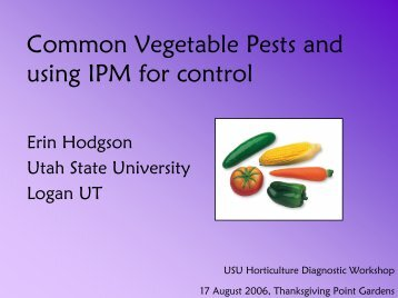 Common Vegetable Pests and using IPM for control - Utah Pests ...