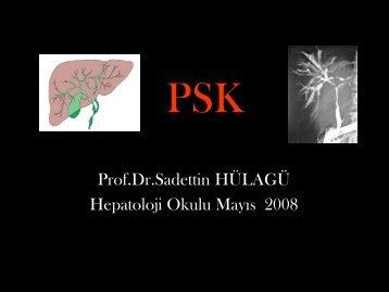 Primer Sklerozan Kolanjit - Prof. Dr. Sadettin Hülagü