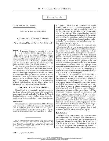 sample essay pmr article