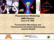 Fluorescence Microscopy + FCS