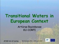 Transitional Waters in European Context