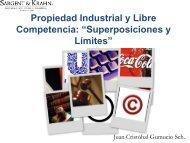 """Propiedad Industrial y Libre Competencia: """"Superposiciones ... - Inapi"""