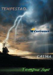 GAA2009 (306-309) 2-Carroc CASTROSUA.indd