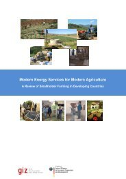 (2011): Modern Energy Services for Modern Agriculture - Powering ...