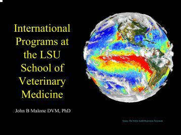 International Programs at the LSU School of Veterinary Medicine