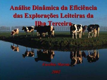 Análise Dinâmica da Eficiência Análise Dinâmica da Eficiência das ...