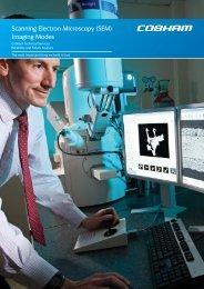 Scanning Electron Microscopy (SEM) Imaging Modes