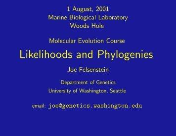 Likelihoods and Phylogenies