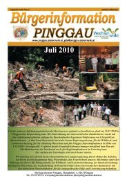 Juli 2010.indd - Pinggau