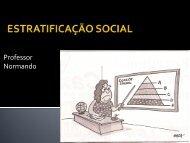 ESTRATIFICAÇÃO SOCIAL - Colégio São Paulo