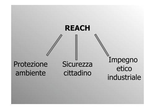 REACH Protezione ambiente Sicurezza cittadino Impegno ... - DipCIA