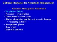 Cultural Strategies for Nematode Management