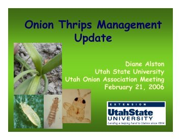 Onion Thrips Management Update - Utah Pests - Utah State University