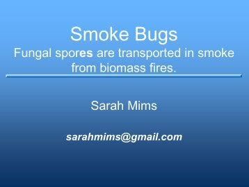 Smoke Bugs