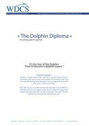 The Dolphin Diploma Â« - National Marine Sanctuaries
