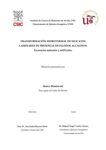 Tesis Marco 2011.pdf - Instituto de Ciencia de Materiales de Sevilla