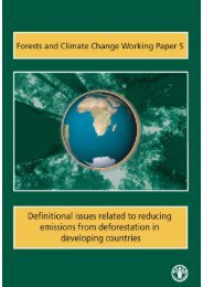 Definitional issues related to reducing emissions from - FAO.org
