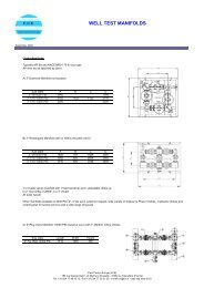 DS-welltest manifolds-0909.pdf - FCE