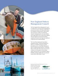 New England Fishery Management Council - US Regional Fishery ...