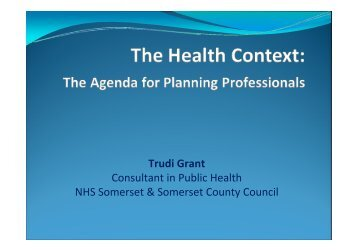 The Agenda for Planning Professionals Presentation - PDF format