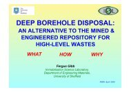 DEEP BOREHOLE DISPOSAL: