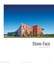 Stone-Face - City of Wylie