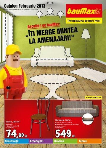 Catalog BAUMAX revista PDF - Infoo.ro