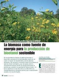 La biomasa como fuente de energía para la producción de ...