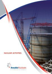 NUCLEAR ACTIVITIES