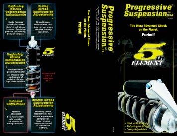PS 5th element flyer 8-01 6.5v - Santa Cruz PL