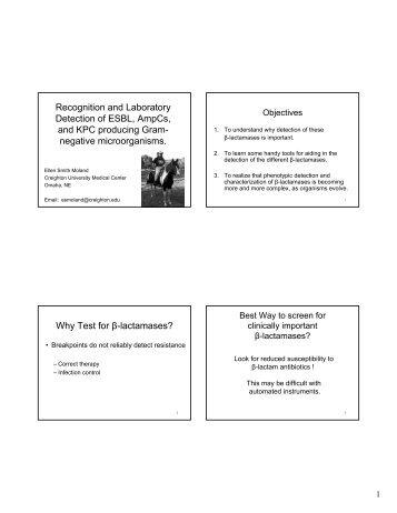 Detect ESBL AmpC Kpc Feb 2009 Handout.pdf