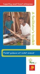 Supporting small forest enterprises – A facilitator's toolkit - IIED pubs ...
