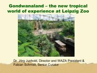 Gonwanaland. The new tropical world of experience at the Leipzig zoo