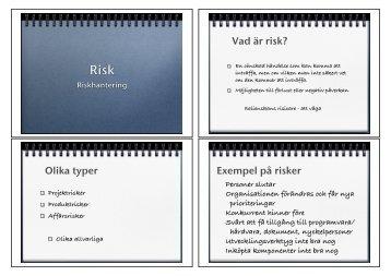 Vad är risk? Olika typer Exempel på risker