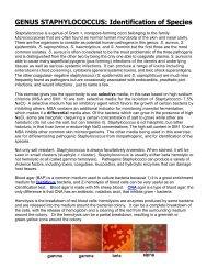 GENUS STAPHYLOCOCCUS: Identification of Species