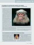 Sommer 2005 - Naturhistorisches Museum Wien - Seite 3